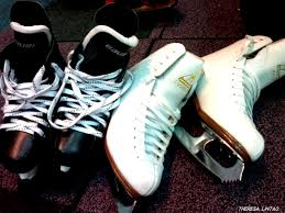skates both kinds